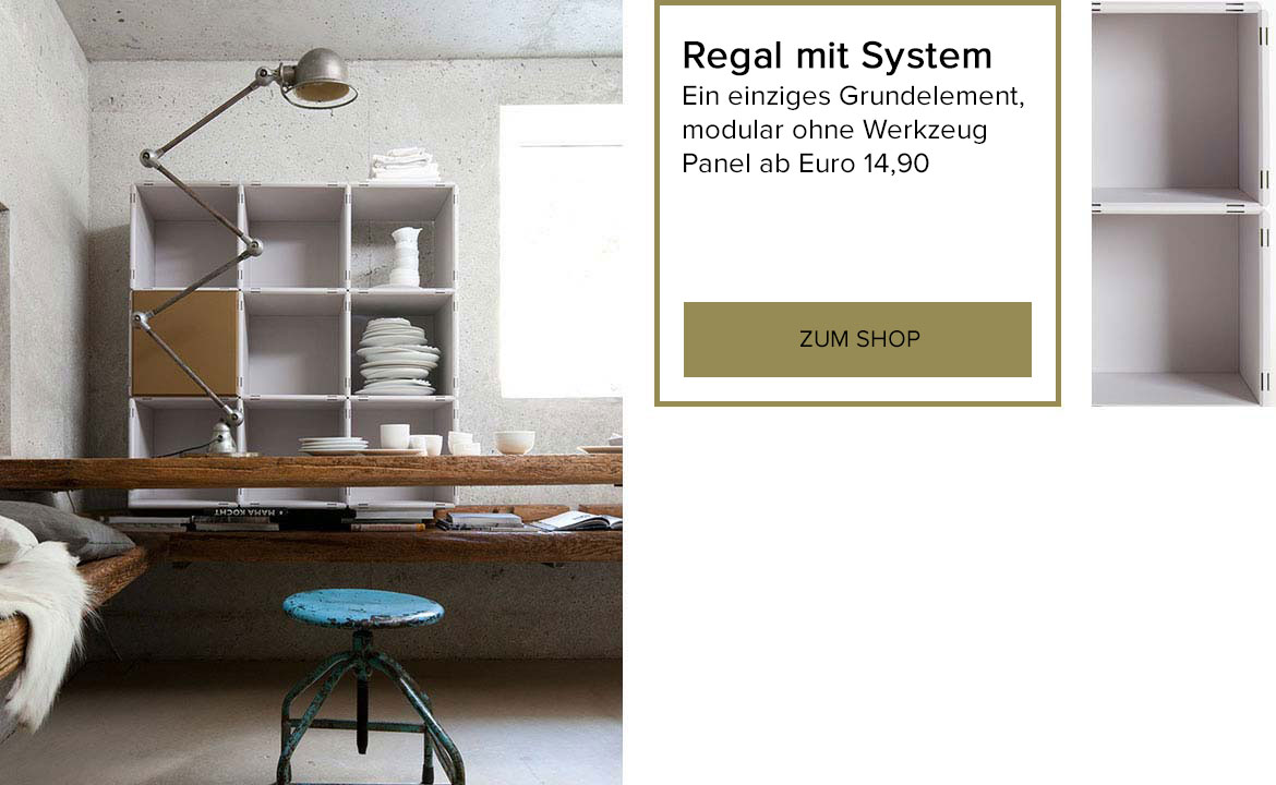 Regal mit System