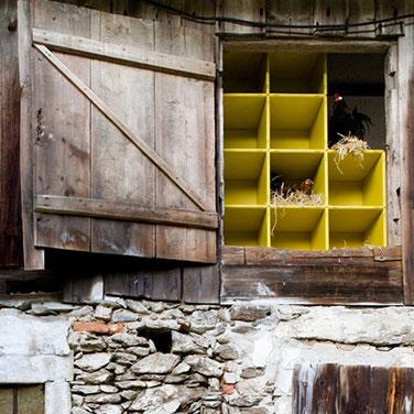 Designer shelves made in Germany